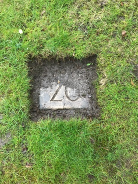 Albert Edward Stafford WRC grave